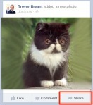 "Facebook Finally Launches ""Share"" Button For The Mobile Feed, Its Version Of ""Retweet"" 