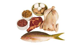 5 Risks of High-Protein Diet | General Topics | Scoop.it