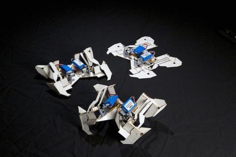 Origami robot made almost entirely of printable parts folds itself up, crawls away (w/ Video) | marked for sharing | Scoop.it