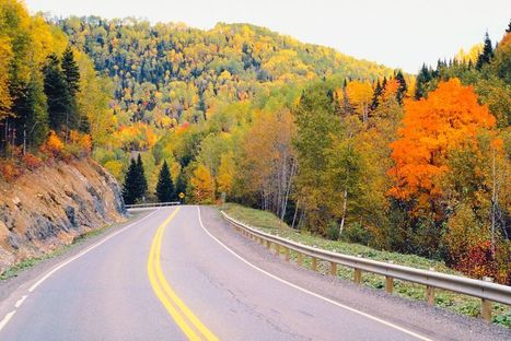 Changing colors: Fall in full swing in the Poconos | The Miracle of Fall | Scoop.it