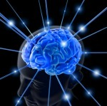 The Team Brain: Beyond Email, Meetings, and Middle Management | Collective Intelligence & Distance Learning | Scoop.it
