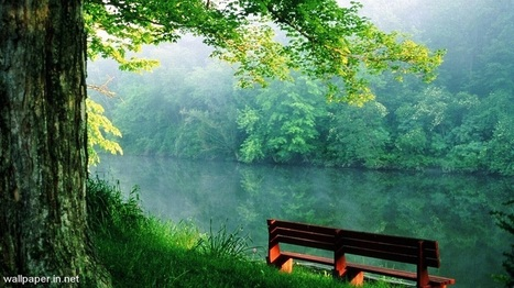 Nature Wallpaper In Tải Hình ảnh đẹp Nhất Cho Facebook Scoopit
