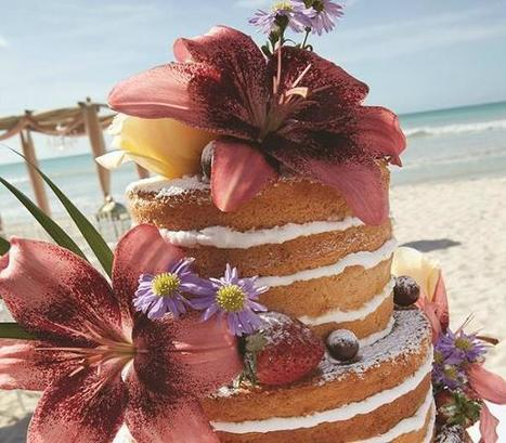Aruba Has An Official Wedding Blog | Caribbean Island Travel | Scoop.it