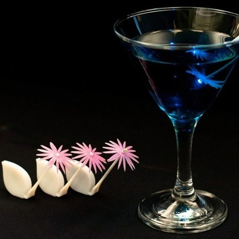 Biomimicry used to build edible boats and petal pipettes for cocktails - Wired.co.uk | Action Durable | Scoop.it