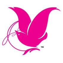 Fairy Godmother Academy | Creative Digital Storytelling | Scoop.it