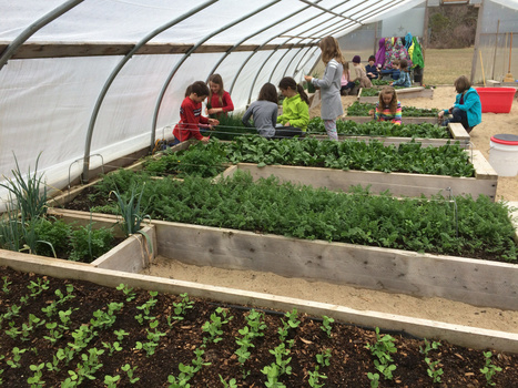 Share if You Think Every School Should Have a Year-Round Gardening Program! | Veille développement durable | Scoop.it
