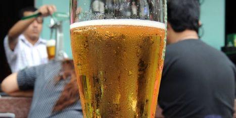 Des scientifiques inventent la bière qui ne donne pas la gueule de bois   Le Monde de la bière   Scoop.it