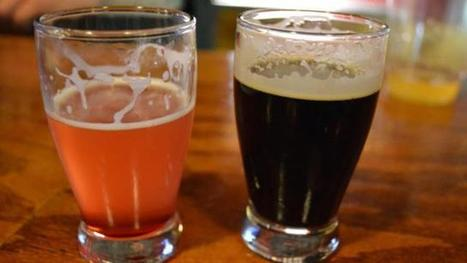 Craft beer pairings for your Thanksgiving feast : Out and About at WRAL.com | International Beer News | Scoop.it