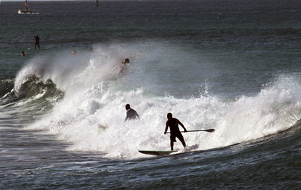 Surfers flock to south shore as swell starts to arrive - Honolulu Star-Advertiser | surf | Scoop.it
