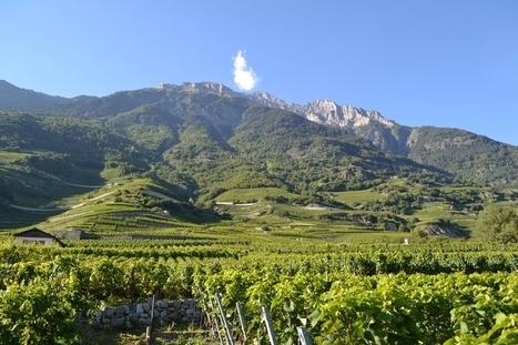 Escapade valaisanne - La Pipette aux quatre vins | Route des vins | Scoop.it