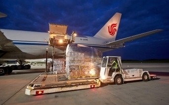 China key to revival in air-cargo growth | Global Logistics Trends and News | Scoop.it