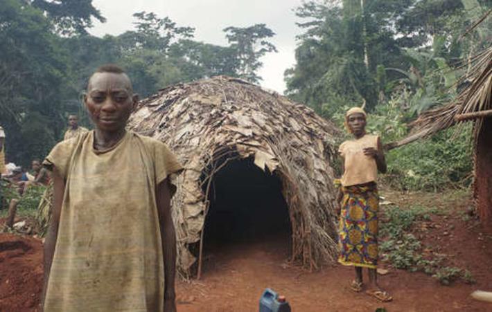 Divulgation d'un rapport: le WWF avait connaissance d'exactions contre les pygmées | Survival International | Kiosque du monde : Afrique | Scoop.it