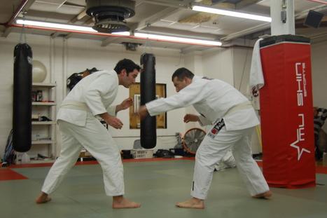 Why I train BJJ- Dan Fontaine | Brazilian Jiu Jitsu | Scoop.it