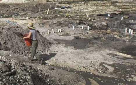 Prehistoric village found in downtown Miami - Bradenton Herald   Ancient cities   Scoop.it