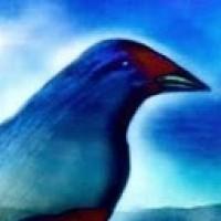 Linux Ascending | Linux A Future | Scoop.it