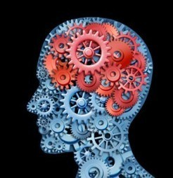 Two paths lead to forgetting – My Brain Solutions Article Library | Healthy Minds | Scoop.it