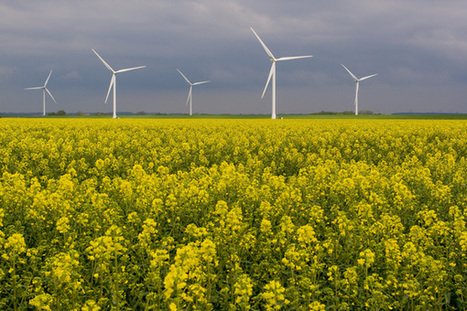 For South Africa's Growing Wind Energy Sector, Guidelines are Essential | Sustainable Futures | Scoop.it