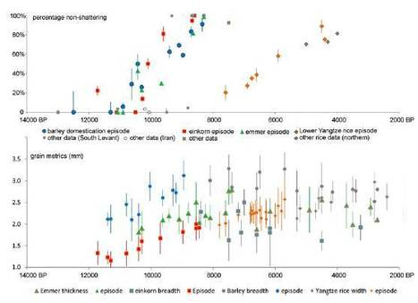 Convergent evolution and parallelism in plant domestication revealed by an expanding archaeological record | Rice origins and cultural history | Scoop.it
