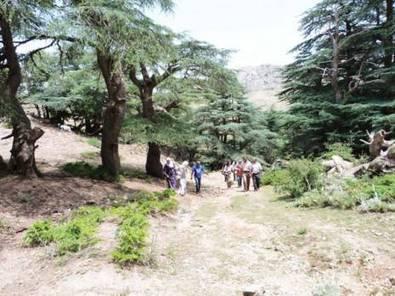 Parc National du Djurdjura : une destination écotouristique à promouvoir - Bouira - El Watan | santé et protection sociale | Scoop.it