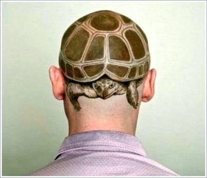 Schildkröte Tattoo Motive Bedeutungen Ta