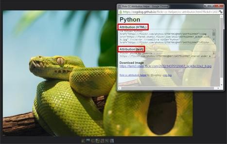 Pour créditer correctement les images libres de Flickr : CC attribution bookmarklet   TICE et Web 2.0   Scoop.it