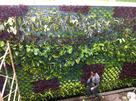 Andean Collection Blog: Green roofs and vertical gardens in NYC ... | Vertical Farm - Food Factory | Scoop.it