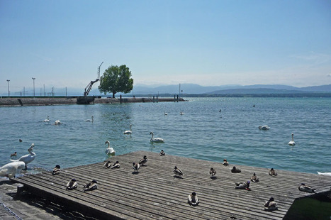 Nyon-Plage | The Blog's Revue by OlivierSC | Scoop.it