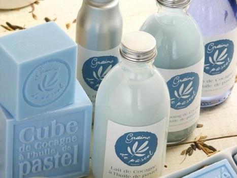 [Marque] La belle ascension de Graine de Pastel   Marketing, Digital, Stratégie, Consommation, Réseaux sociaux, Marques, ...   Scoop.it