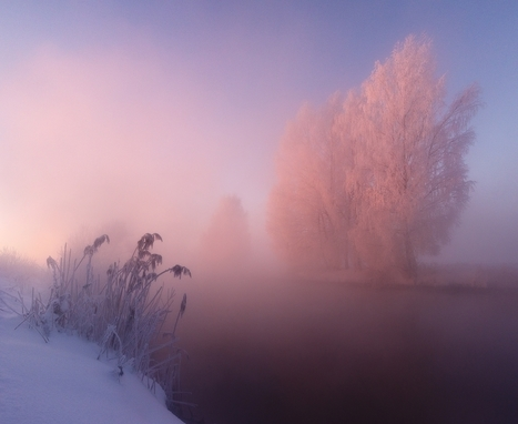 The Dramatic Frozen Countryside of Belarus Photographed by Alex Ugalnikov | a photographer's life | Scoop.it