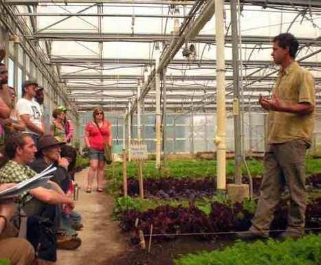 Farm School NYC Seeds Local Urban Food System | Urban Gardens | Unlimited Thinking For Limited Spaces | Urban Gardens | Community Gardening | Scoop.it