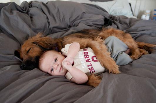 0897918fe1 Köpeğinizin En Yakın Arkadaş...