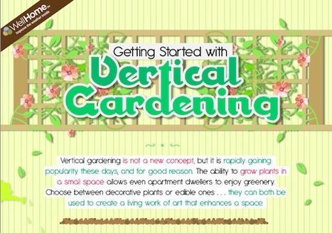 Get Started With Vertical Gardening | green infographics | Scoop.it