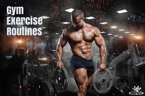 Muscle Building Program For Men