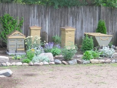 My first Year Keeping Bees » The Door Garden | Pollinators: a plant focus, for backyards | Scoop.it