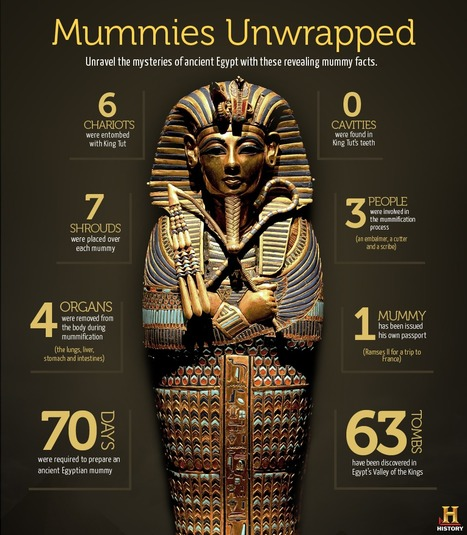 Mummy Facts (INFOGRAPHIC) | Ancient Egypt and Nubia | Scoop.it