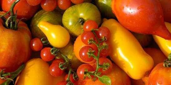 Aubergine, tomate, carotte… Savez-vous vraiment distinguer fruits et légumes?