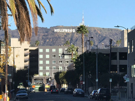 Picture of the Day: Welcome to Hollyweed | xposing world of Photography & Design | Scoop.it