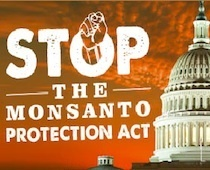 Tell Congress to Stop the Monsanto Protection Act! | Coffee Party Science | Scoop.it