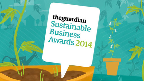 Guardian Sustainable Business Awards   Guardian Sustainable Business   The Guardian   Gaia Ways   Scoop.it