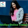 JAVA, SAP, Oracle Online Training at SRY IT Solutions