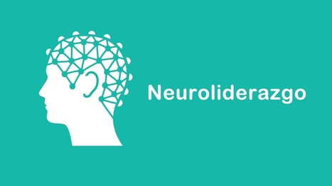 El neuroliderazgo: Competencia clave para la transformación digital | Educacion, ecologia y TIC | Scoop.it