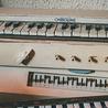 Les nouveaux instruments : vintages ou précurseurs...?