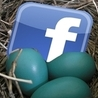 Buy Targeted Facebook Likes And Twitter Followers