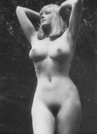 1950 classic big tits - 2 7