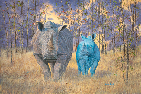 Earth and Sky, Brothers under the Sun | Wildlife Art by: Laura Curtin | Good News for Artists | Scoop.it