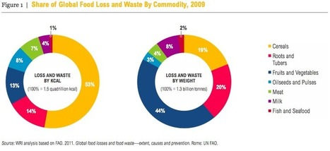 Reducing Food Loss and Waste - WRI report | Horticulture | Scoop.it