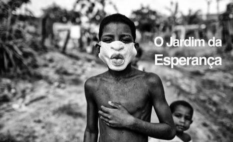 O Jardim da Esperança un projet à soutenir | aquarium | Scoop.it