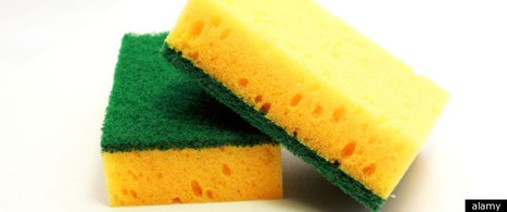 The Woman Who Ate 4,000 Washing-Up Sponges | Amusing, Shocking & Thought-Provoking News | Scoop.it