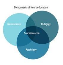 Inside the Learning Brain   Assessment of Deeper Learning   Scoop.it