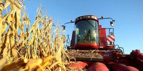 En 2013, la production agricole d'Aquitaine a perdu plus d'un milliard d'euros   Agriculture en Dordogne   Scoop.it